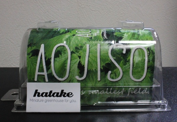 Hatake アオジソ9