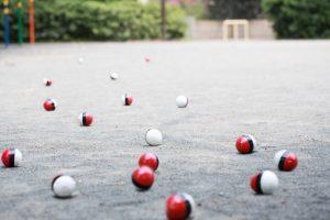 相棒を連れて紅白ボールが公園に集まってきた