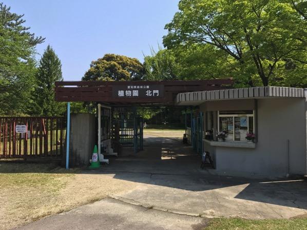 愛知県森林公園の植物園をまた散歩したい 自然に癒され 野生動物に驚きました 4