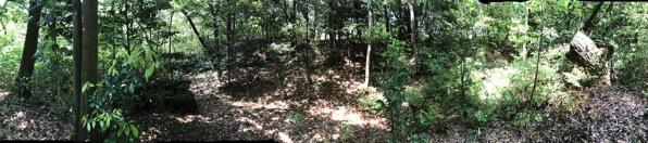 愛知県森林公園の植物園をまた散歩したい 自然に癒され 野生動物に驚きました 9
