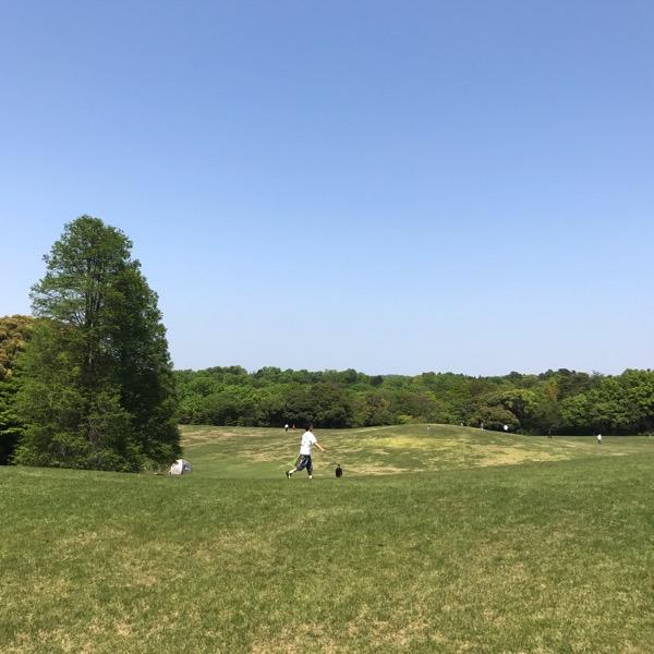 愛知県森林公園の植物園をまた散歩したい 自然に癒され 野生動物に驚きました 12