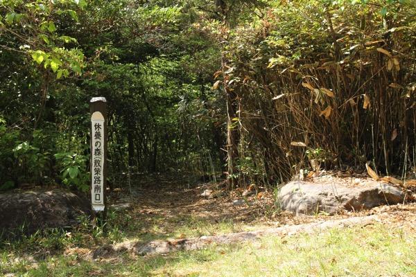 愛知県森林公園の植物園をまた散歩したい 自然に癒され 野生動物に驚きました 8