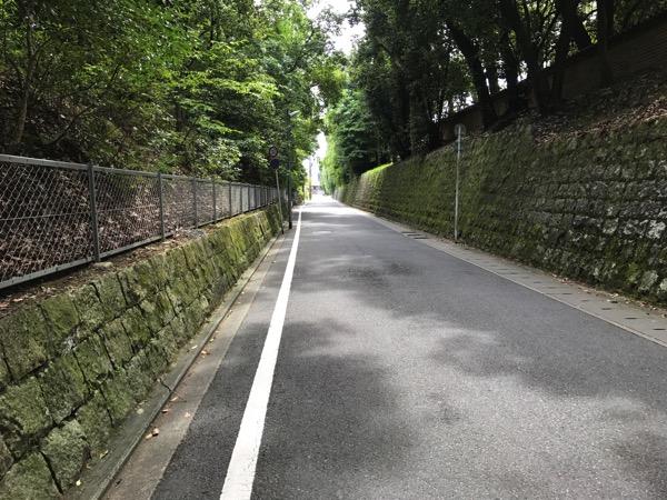 京都ぶらり観光の雑感 京都御所 龍安寺 仁和寺 4