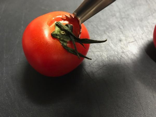 トマトシャークがお勧め 包丁より安全にトマトのヘタが取れるのが良い 2